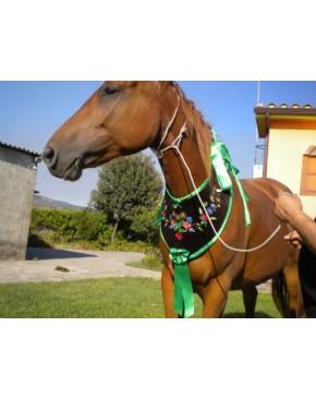 Collana ricamata per il cavallo